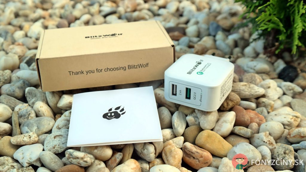 Blitzwolf_30W-charger-7