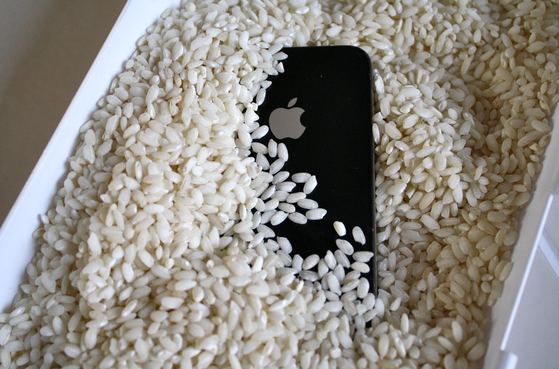 smartfon v ryži