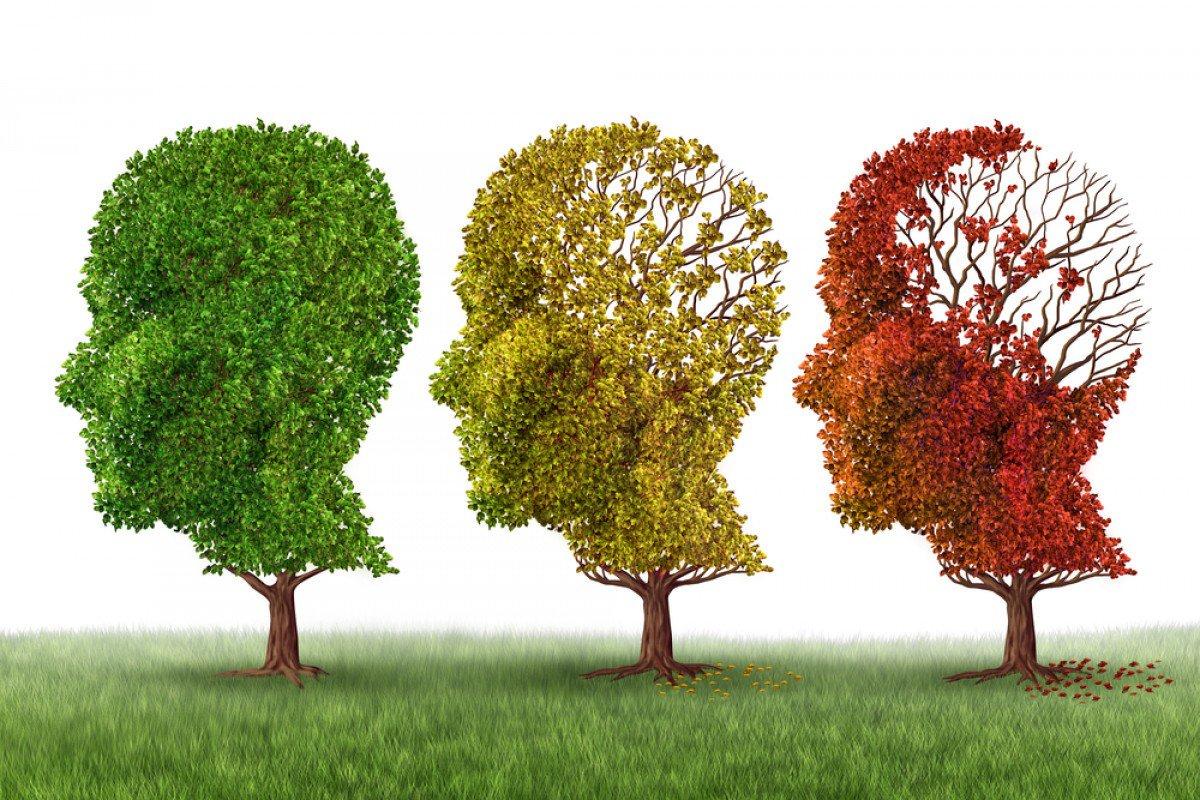 mozgový implantat na zlepšenie pamäte