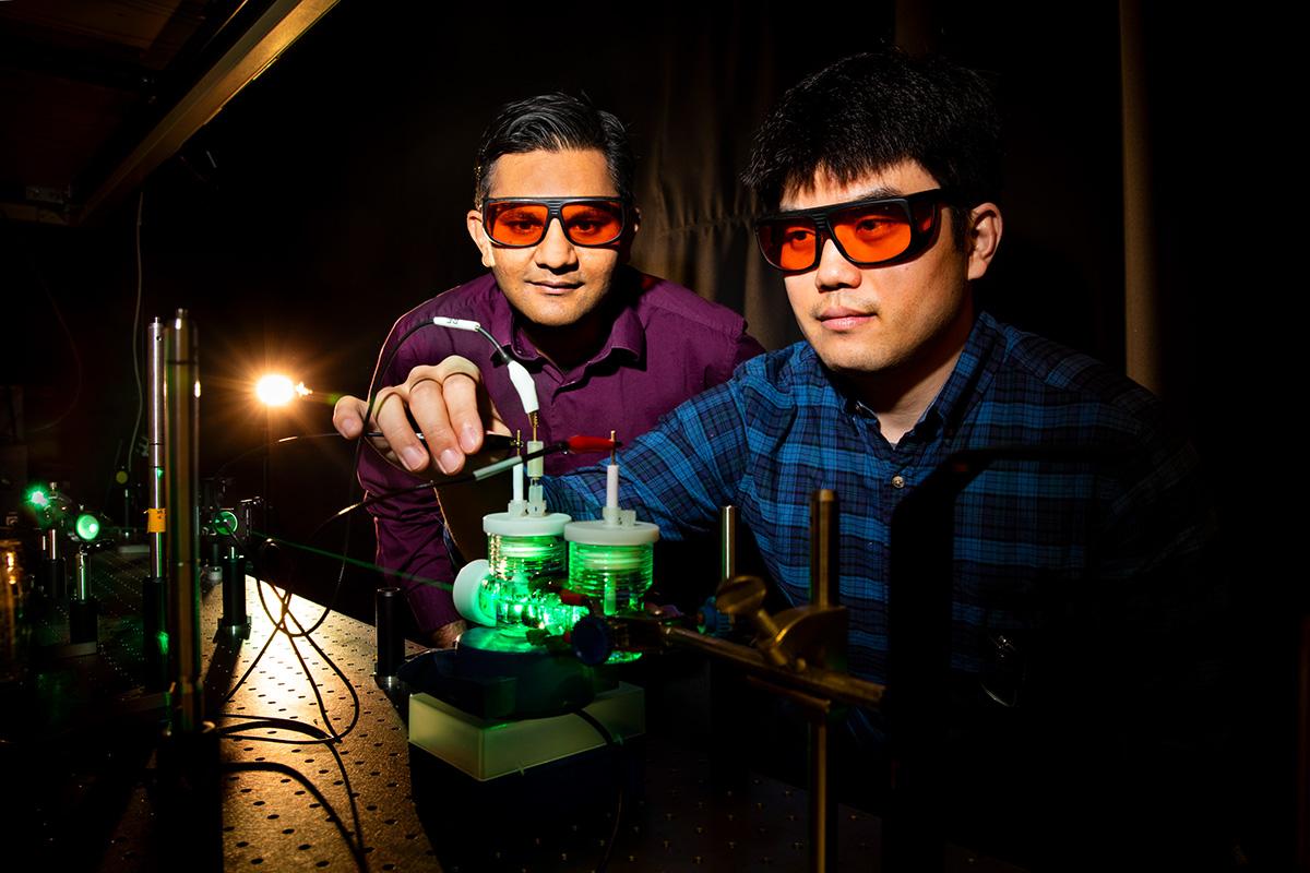 Vedci vytovorili umelú fotosyntézu: Len vďaka kovu, s ktorým sa stretávame dennodenne