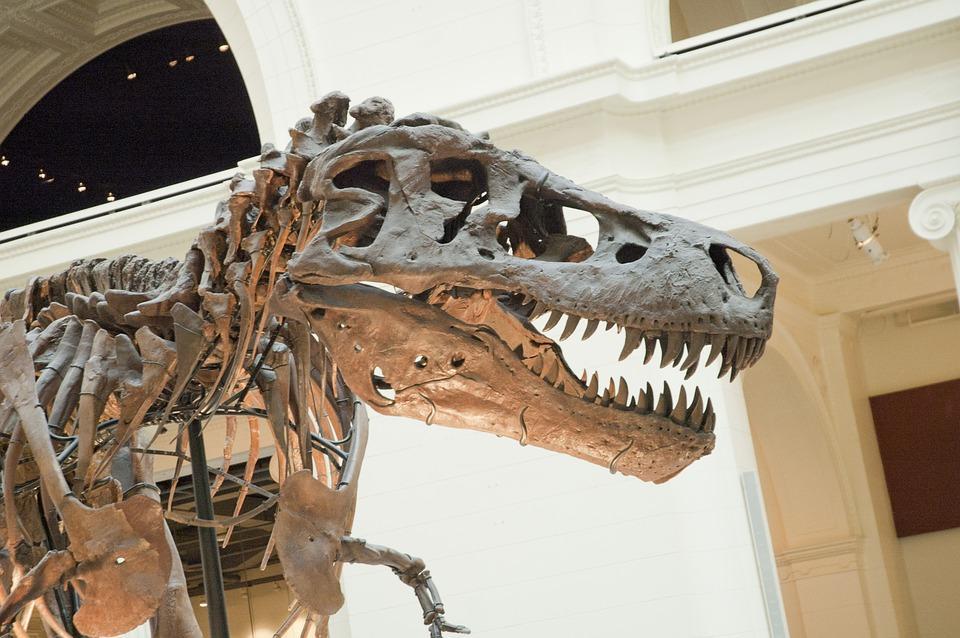 dinosaury mliečna dráha