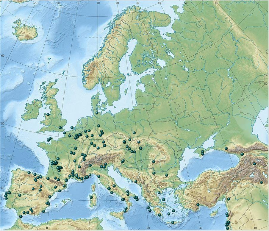 neandertálci výskyt