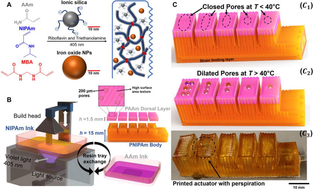 Malé robotické prsty využívajú termoreguláciu podobnú ľuďom