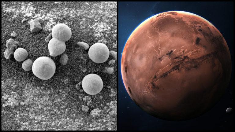 Našli sme konečne život na Marse? Vedci priniesli dôkazy o živých hubách